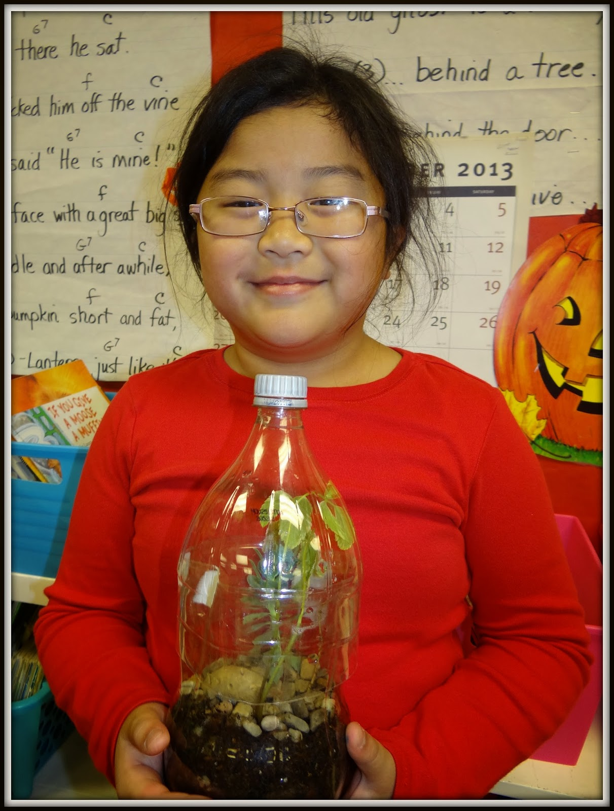 Patties Classroom Jack And The Beanstalk Terrariums And