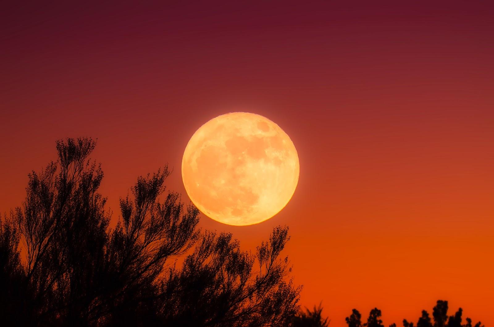 Nasa menuju Bulan