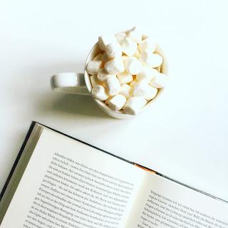 Romane Thriller Sachbuch Bestseller Buchtipp