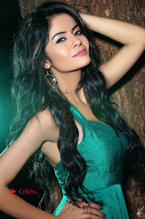 Actress Gehana Vasisth Latest Pictureshoot Gallery  0003.JPG
