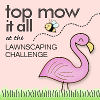 I'm a Top Mow it All
