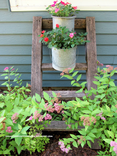 Photo of a rustic ladder with minnow bucket planters