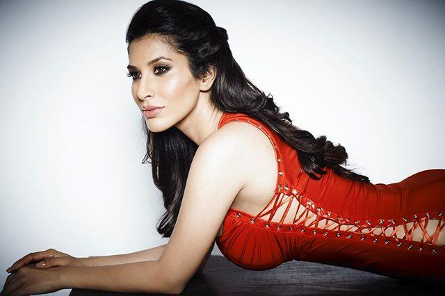 Actress Sophie Choudry Hot Sizzling Pictures