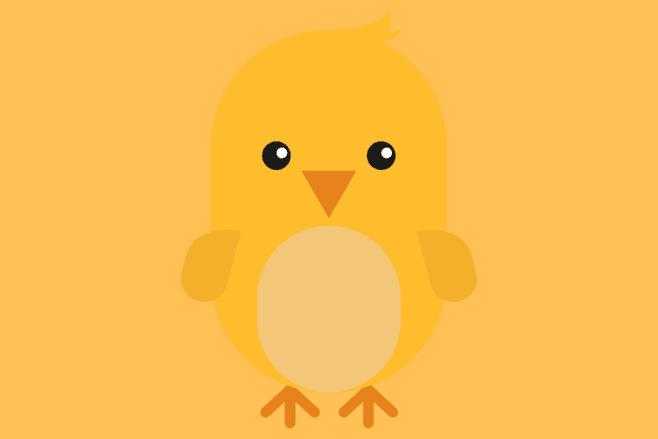 Contoh Laporan Hasil Observasi Ayam