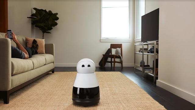 Bosch Home Robot