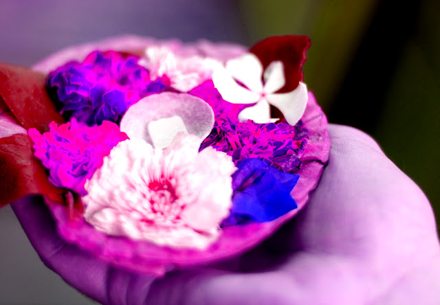 flower-offering-to-god-image
