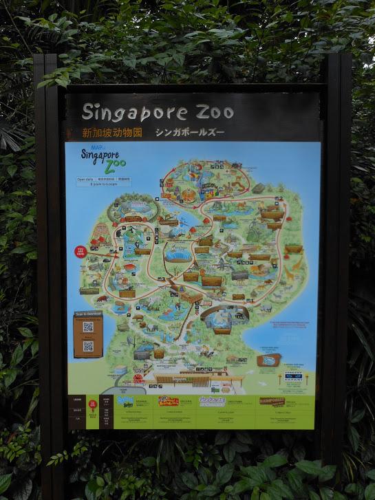 Szingapúri randevú maláj