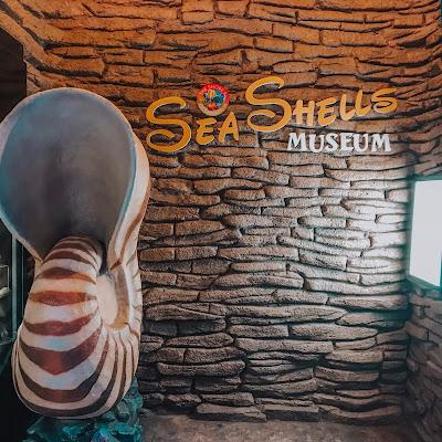 Sea Shell Museum in The Shore Ocenarium Melaka