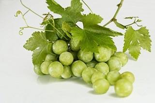 grapes-stafilia