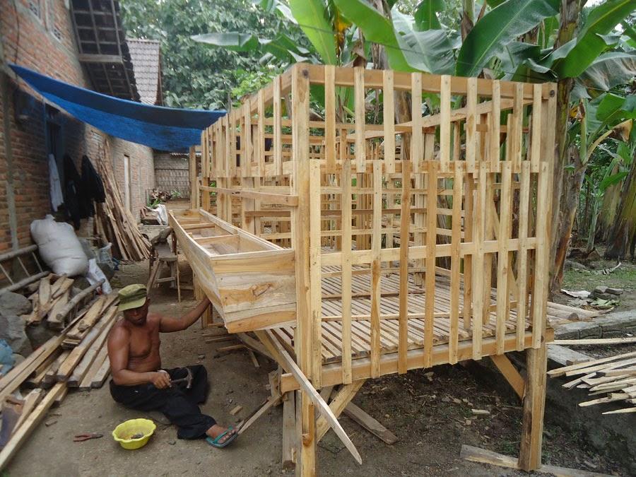 Jual Kandang Kambing & Domba Bahan Kayu Jati Legal Video ...