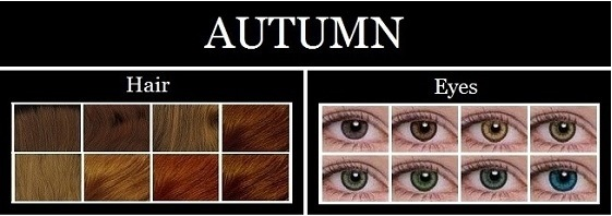 Autumn Characteristics
