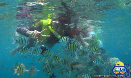 lokasi snorkeling wisata pulau seribu tidung