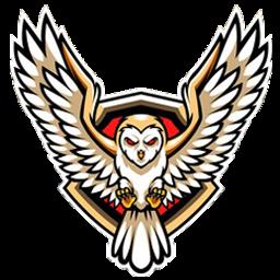 logo burung hantu polos