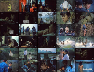 良家妇女 / Liangjia funu / Woman of the Good Family. 1986.