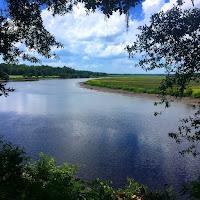 https://c-f-legette.pixels.com/featured/ashley-river-c-f-legette.html