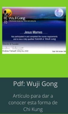 pdf wuji gong. que e
