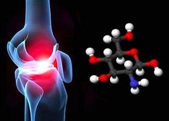 Resultado de imagen de sulfato de glucosamina articular