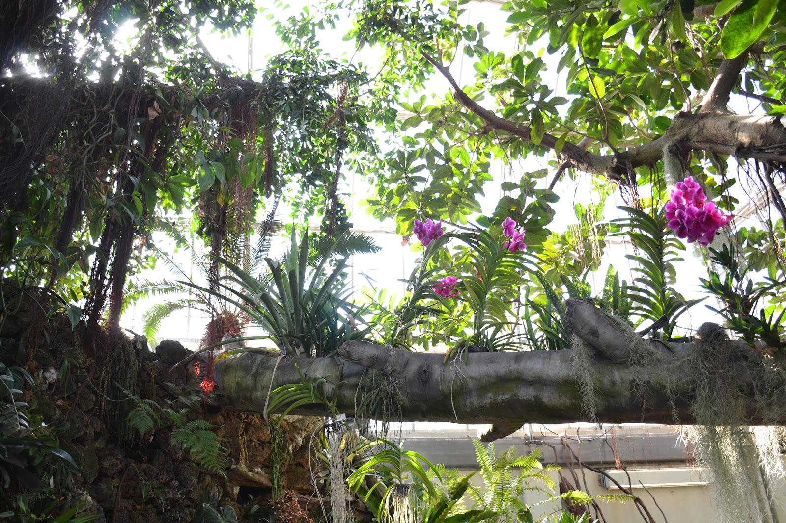 Lostvestige National Botanical Gardens