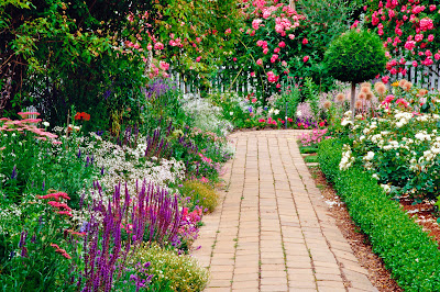 Bahçe bitkileri ve çiçeklerinin taşınması
