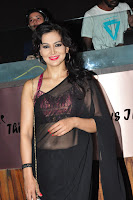 Juliana Nicola sizzling in saree 005.JPG