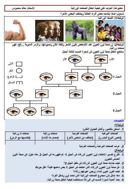 مذكرات تعريف الصبغيات كدعامة لانتقال الصفات الوراثية خالد محمودي