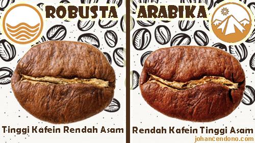 pengertian kopi robusta dan arabika