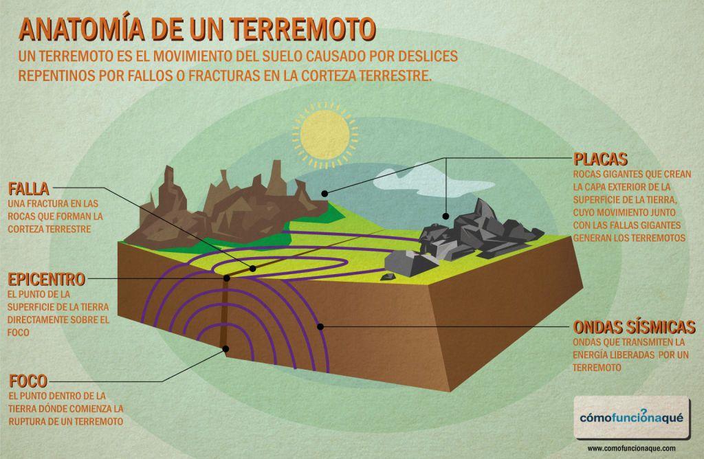 La cucala educativa: Anatomía de un terremoto