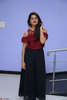 Pavani Gangireddy in Cute Black Skirt Maroon Top at 9 Movie Teaser Launch 5th May 2017  Exclusive 019.JPG