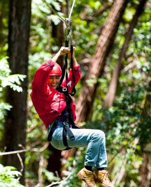 Maui Tree top canopy zipline tours; Tickets and Reservations