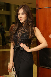 Angela Krislinzki in Transparent Black Gown at Rogue Movie Teaser Launch 1st March 2017 103.JPG