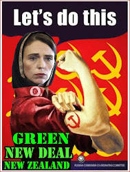 Ardern, Bloomfield, Labour Party all part of the communist coronavirus conspiracy — NZ Public Part