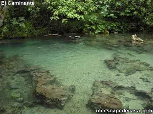 Aguas de color verde claro de la naciente del río Tioyacu (Rioja, Perú)- 2