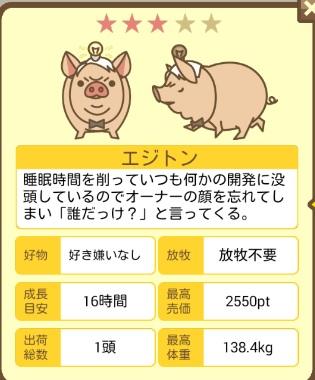 養豚場mix ぶっは