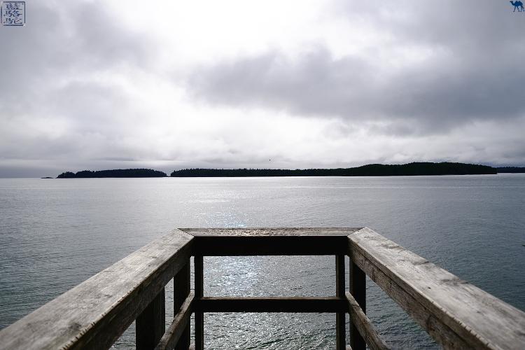 Le Chameau Bleu - Blog Voyage Tofino Canada -Randonnée Tonquin Trail Tofino Colombie britannique