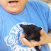 Man Catches Kitten Who Jumps from Tree to Be Rescued