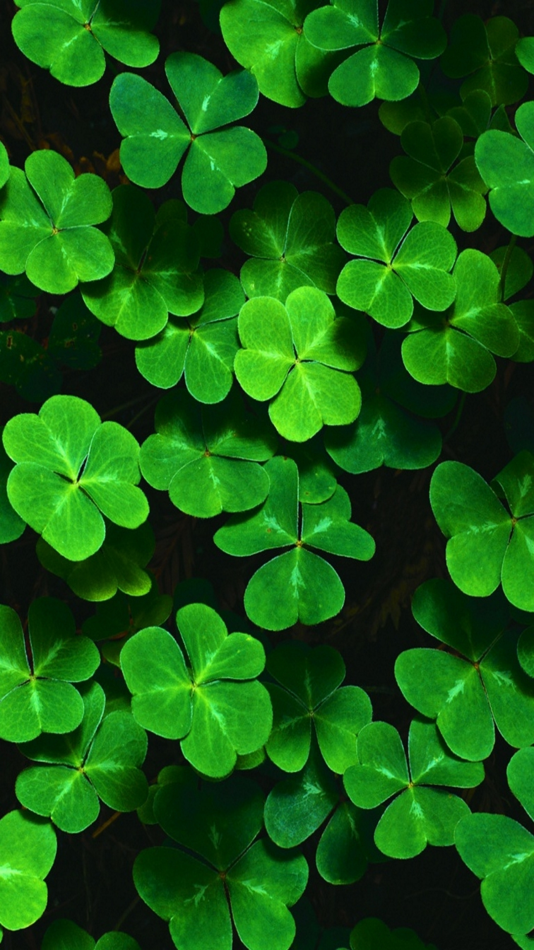 st patricks day wallpaper