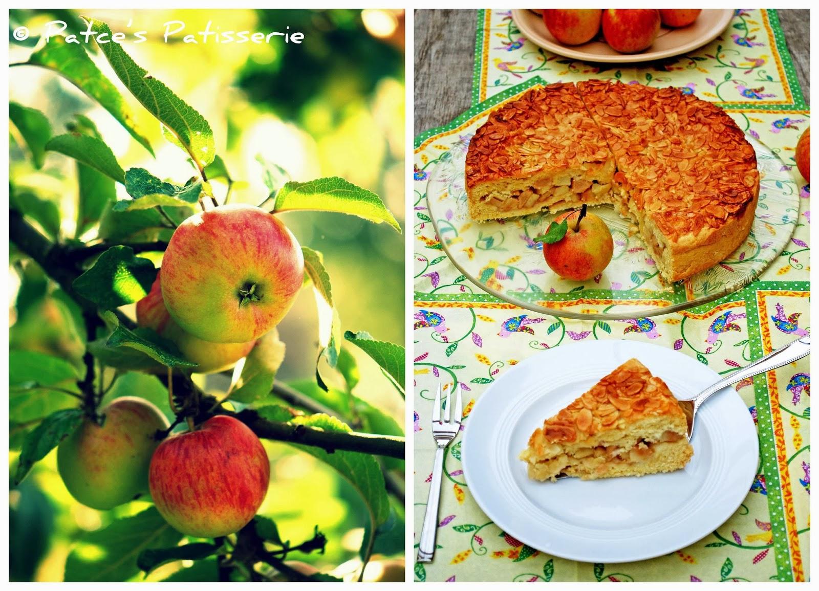 florentiner apfelkuchen blech