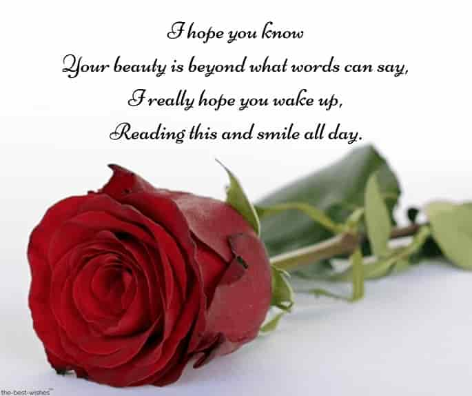 good morning poems to make her fall in love with red rose