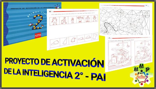 PROYECTO DE ACTIVACIÓN DE LA INTELIGENCIA 2-PAI