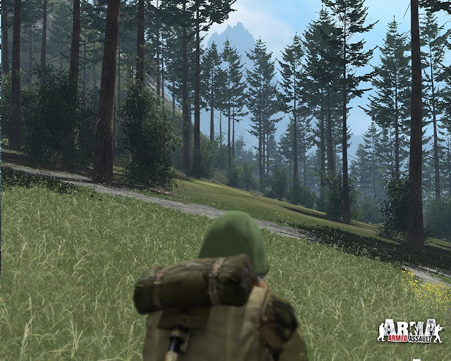 ARMA Armed Assault PC Full Version Screenshot 2