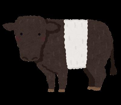 ベルテッドギャロウェイのイラスト(牛)