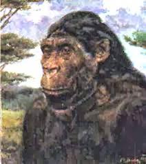 KUMPULAN GAMBAR MANUSIA PURBA Foto Manusia Purba Homo