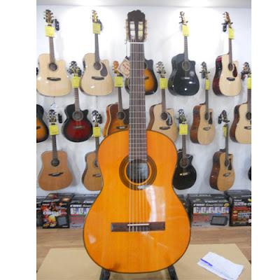 guitar Classic Takamine D30