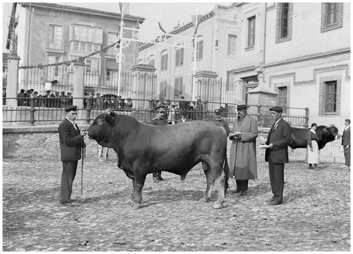 Plaza del ganado