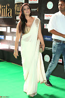 Varalakshmi in Cream Saree Sleeveless Backless Deep Neck Choli at IIFA Utsavam Awards March 2017 061.JPG