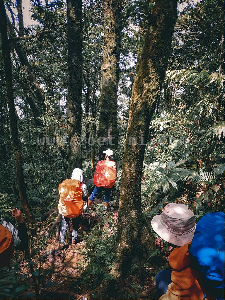 Tips Pendakian Gunung Salak