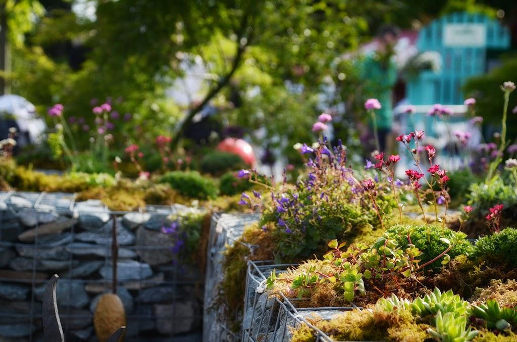 gabiony w ogrodzie