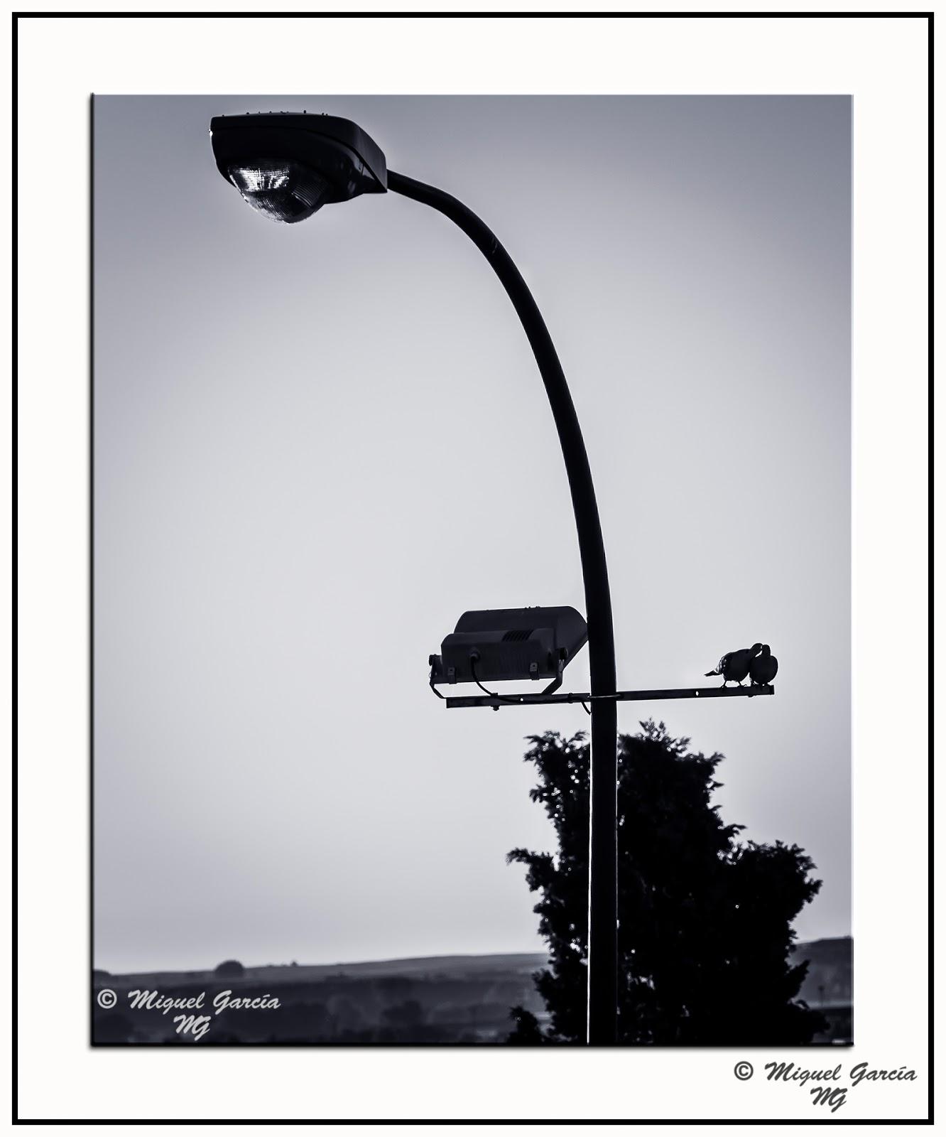 El ojo de cristal fotograf a amateur bodegones objetos for Objetos para banarse
