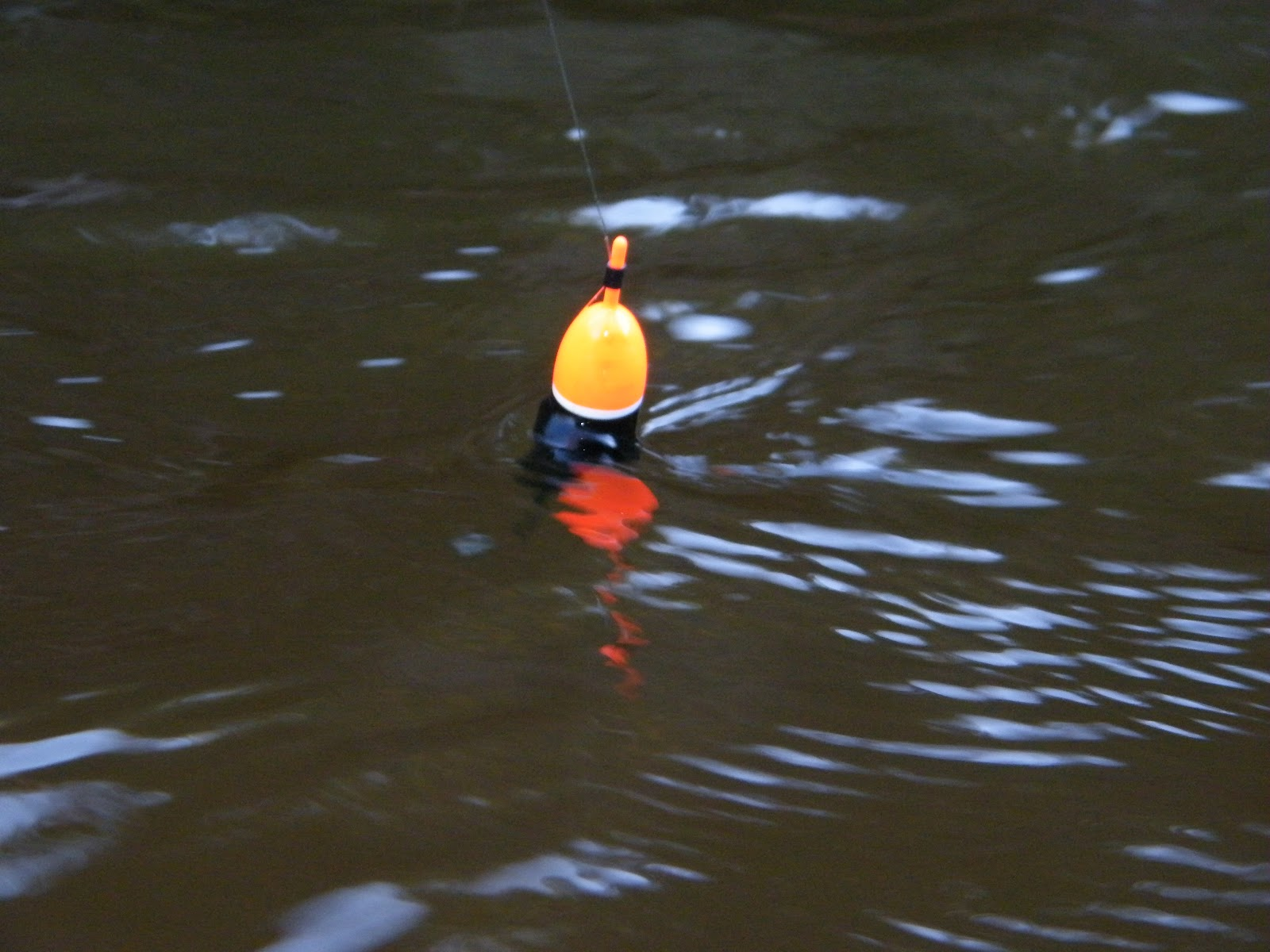 Slab Seeker Fishing Float Fishing For Steelhead