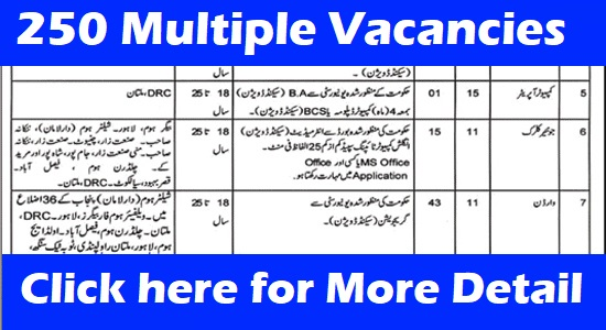 social welfare and bait-ul-maal,social welfare & bait ul maal department,dg social welfare,clerk jobs in bait ul mall,pakistan bait ul mal,clerk jobs in bait ul mall 2019,bait ul mal,animal welfare,minhaj welfare foundation (nonprofit organization),government jobs,pakistan bait ul mal sweet home,pakistan bait ul mal scholarship,social,government jobs without degree,govt jobs,breaking news